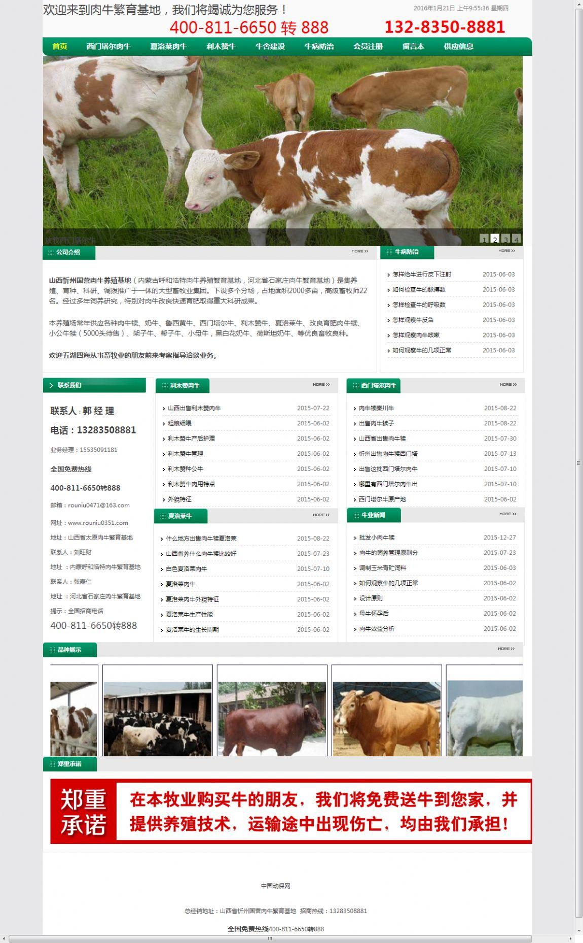 山西忻州国营肉牛养殖基地