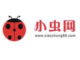 东莞小虫电子科技有限公司